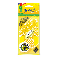 Palm Tree 1-Pack. Jasmine